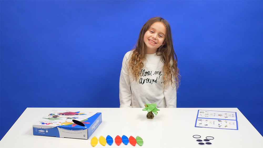 Beach Set - How to Build an Octopus, Beach Ball, and More!