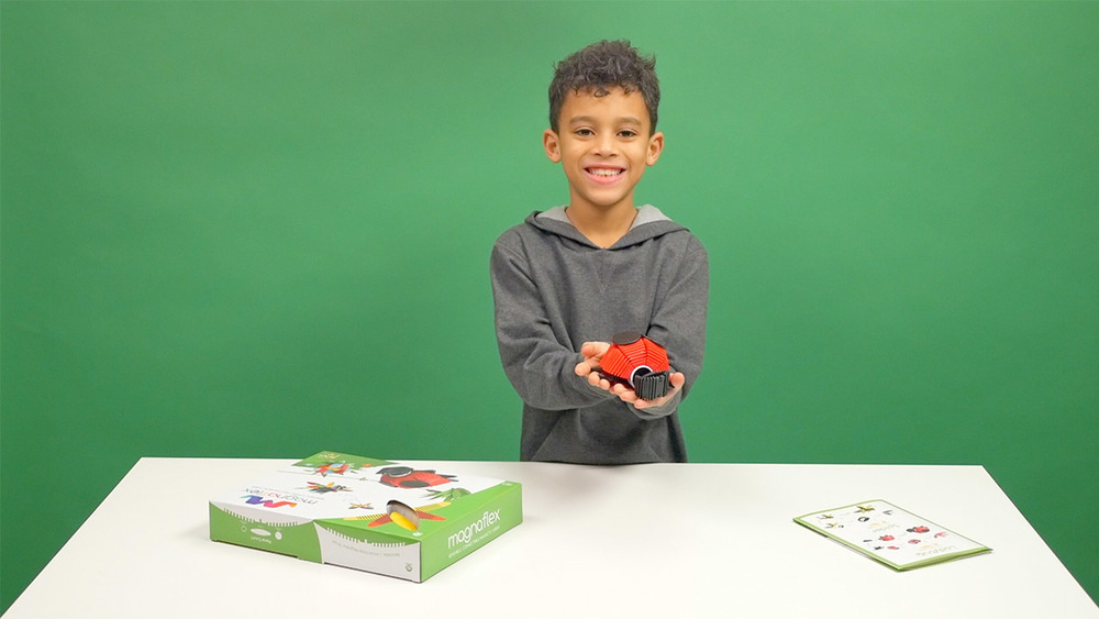 Critters Set - How to Build a LadyBug, Bumblebee, and More!